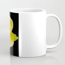 Beautiful Yellow Rose Flower on Black Background Coffee Mug