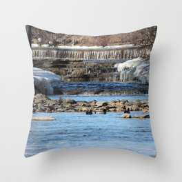 Winter Water Throw Pillow
