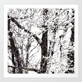 trees II Art Print
