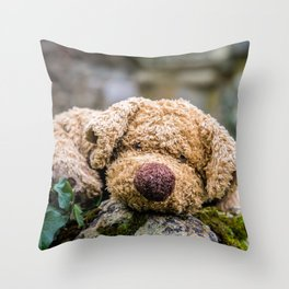 The lonely teddy Throw Pillow