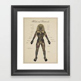 Medicinal Botanicals Framed Art Print