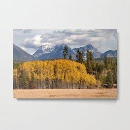 Big Prairie - Glacier National Park Metal Print