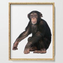Chimpanzee Serving Tray