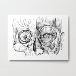Anatomical head Metal Print