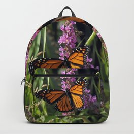 Monarch Splendor Backpack