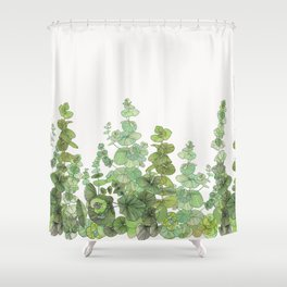 Eucalyptus - Silver Dollar Shower Curtain