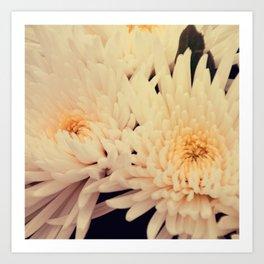 Gorgeous white dahlia Art Print