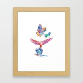 birds in color Framed Art Print
