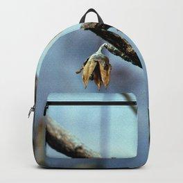 Flowering Seed Pods Backpack