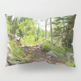 Trail Pillow Sham