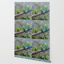 Birdies Wallpaper