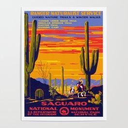 Saguaro National Monument Poster