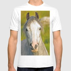 Welsh Pony  MEDIUM White Mens Fitted Tee
