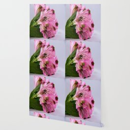 Pink Alstroemeria-4 Wallpaper