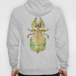 Leaf bug Hoody
