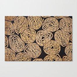 Wood planks texture Canvas Print