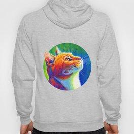 Rainbow Cat Portrait Hoody