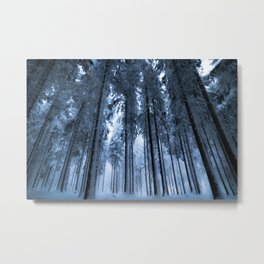 Snowy Winter Trees - Forest Nature Photography Metal Print