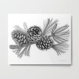 Pitch Pine Metal Print