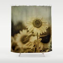 Sunny Field Shower Curtain