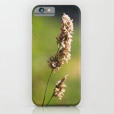 Mountain Grass Slim Case iPhone 6s