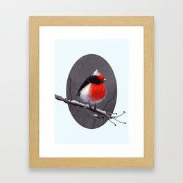 Bird in the snow Framed Art Print