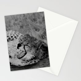Cheetah fangs Stationery Cards