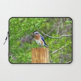 Bluebird on a Fence Post Laptop Sleeve