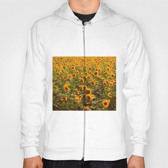 Fields of gold Hoody