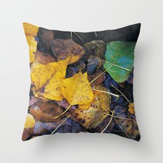Rain leaves II Throw Pillow