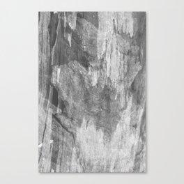 #3 Canvas Print