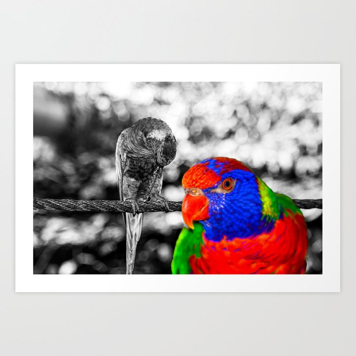 The bird in paradise Art Print