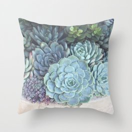 Succulent Container Throw Pillow