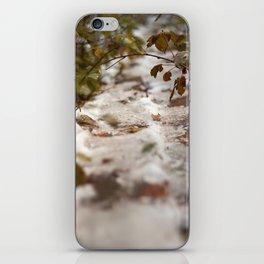 Fall Canada iPhone Skin
