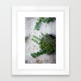 Fresh Herbs Framed Art Print