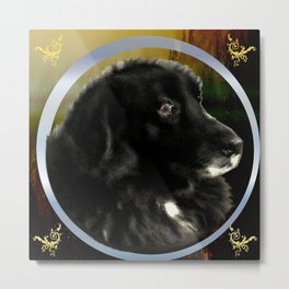 Portrait of a Dog Metal Print