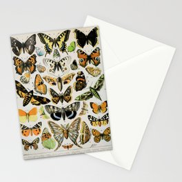 Papillon III Vintage French Buitterfly & Moth Chart Stationery Cards