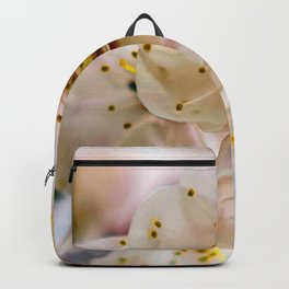 Stunning Japanese Apricot Flowers Backpack