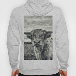 Highland Cow II Hoody