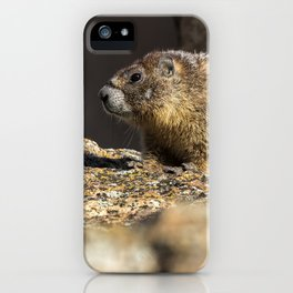 Two Marmots At Smith Rock iPhone Case