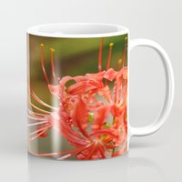 dorothy Mugs featuring Blooms for Dorothy by Olive Coleman Photography