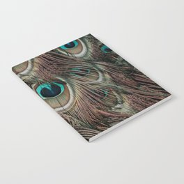 Peacock feathers abstract Notebook