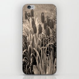 old timey tulips iPhone Skin