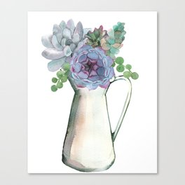 Succulents in Pitcher Canvas Print