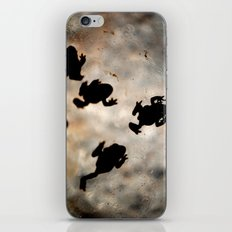 Frogs iPhone & iPod Skin