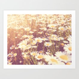flowers. daisy photograph, We Need Each Other Art Print
