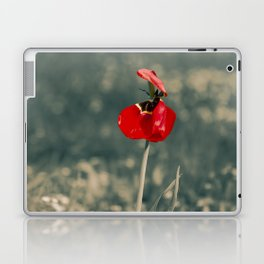 Lonely Red Flower Laptop & iPad Skin