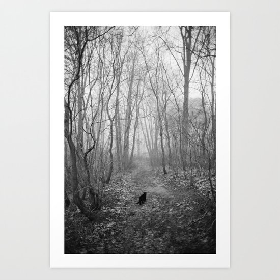 Black cat alone in the forest Art Print