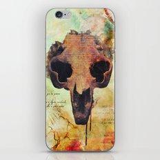 Crânio Dissonia iPhone & iPod Skin