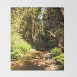 A Muir Woods Scene Throw Blanket